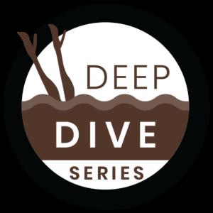 Miss-Details-deep-dive-blog-series-2